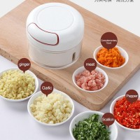 Mini Hand Pull Food Processor Chopper For Garlic Vegetable