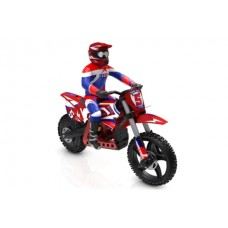 SKYRC SR5 1:4 SCALE RC DIRT BIKE